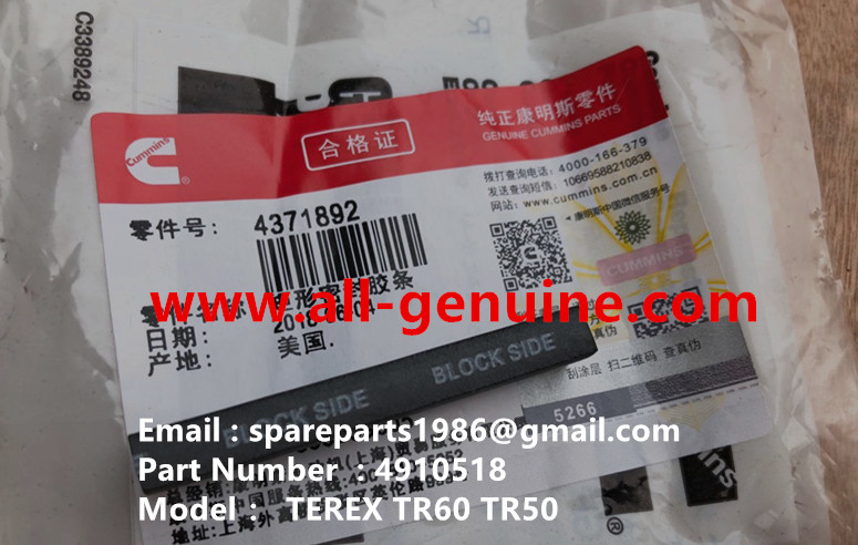 TEREX NHL MINING OFF HIGHWAY RIGID DUMP TRUCK TR50 TR60 CUMMINS ENGINE  4910518 STRIP SEAL